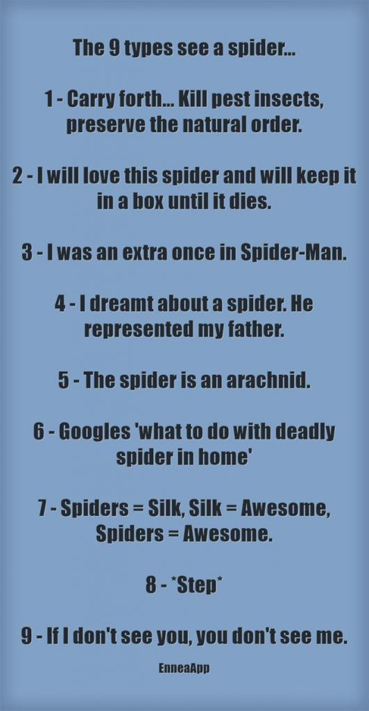 9 Types See a Spider...